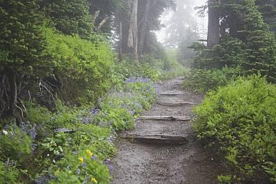 Foggy Forest Path Print by Craig Tuttle
