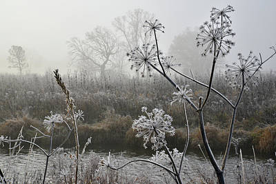 Photograph - Foggy Frosty Morning Along Nippersink Creek by Ray Mathis