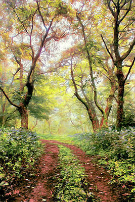 Painting - Foggy Hiking Trail In The Blue Ridge Ap by Dan Carmichael