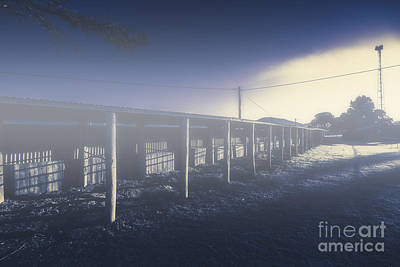 Foggy Horse Stables Art Print