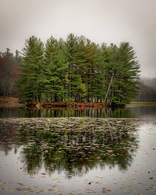 Photograph - Foggy Island Reflections by Mike Koenig