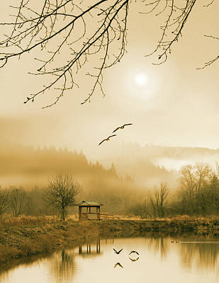 Foggy Lake And Three Couple Of Birds Art Print