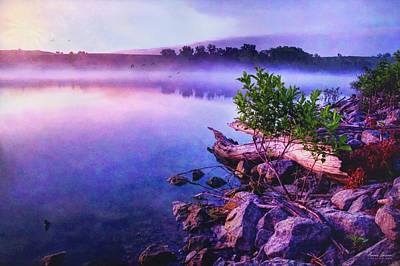 Photograph - Foggy Lake Sunrise by Anna Louise