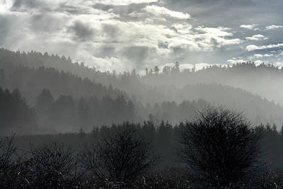 Photograph - Foggy Layers by Betty Depee