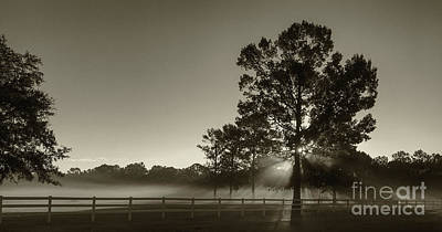 Photograph - Foggy Light Beams by Dale Powell