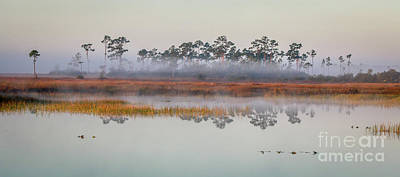 Photograph - Foggy Marsh Morning #2 by Tom Claud