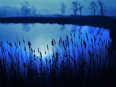 Photograph - Foggy Marsh2 by John Hansen