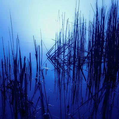 Photograph - Foggy Marsh3 by John Hansen