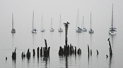 Photograph - Foggy Morning And Sailboats At The Bayshore by Gary Slawsky