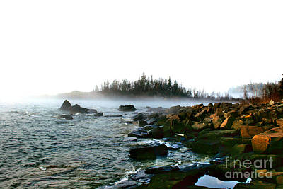 Wall Art - Photograph - Foggy Morning At Cove Point by Tom Chamberlain