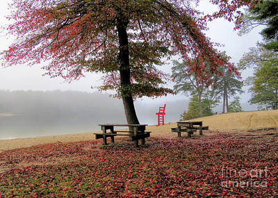 Photograph - Foggy Morning At Morton Park  by Janice Drew