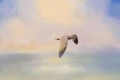 Flying Gull Photograph - Foggy Morning At Sea by Jai Johnson