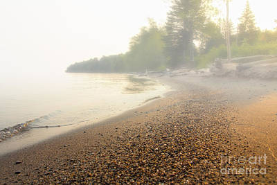 Photograph - Foggy Morning by CJ Benson