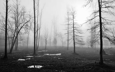 Foggy Morning Art Print by Conn Hutzell
