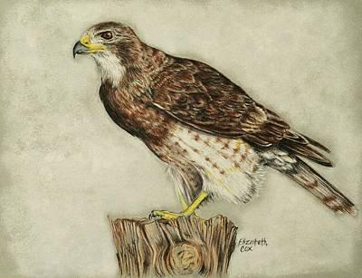 Hawks Mixed Media - Foggy Morning by Elizabeth Cox
