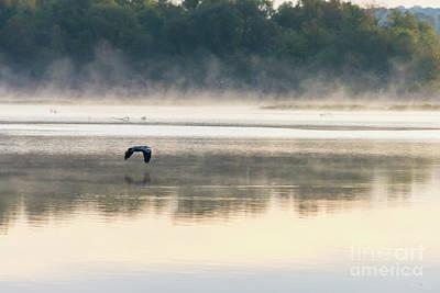 Photograph - Foggy Morning Flight by Jennifer White