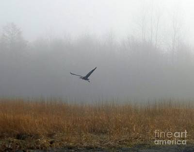 Photograph - Foggy Morning Heron In Flight by Helen Campbell