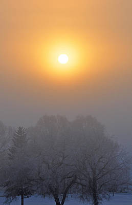 Foggy Morning In Montana's Gallatin Valley Art Print