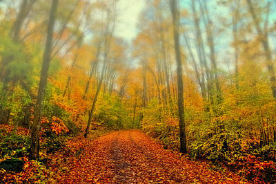 Autumn Foliage Photograph - Foggy Morning In The Adirondack Mountains by David Patterson