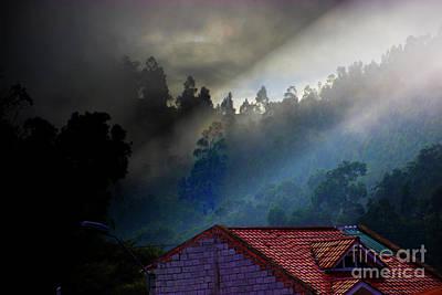 Photograph - Foggy Morning In The Bosque De Monay by Al Bourassa