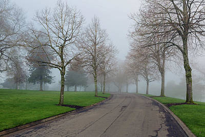 Photograph - Foggy Morning In The Park by Jit Lim