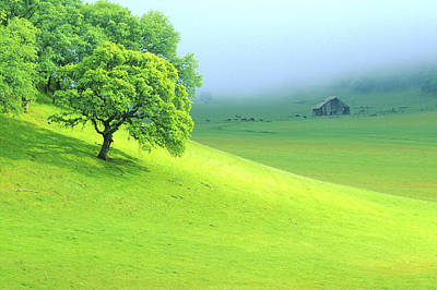 Farm Scenes Photograph - Foggy Morning In The Valley by Eggers Photography