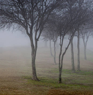 Photograph - Foggy Morning by James Woody