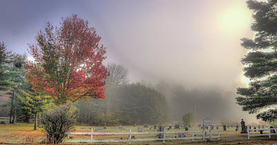 Photograph - Foggy Morning by Jane Luxton
