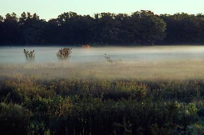 Photograph - Foggy Morning Meadow by Bernard Lynch