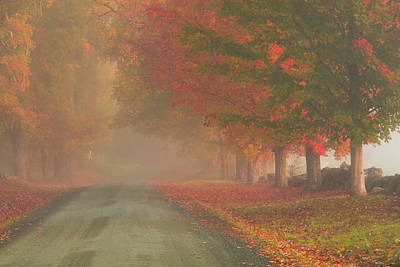 Photograph - Foggy Morning On Cloudland Road by Jeff Folger