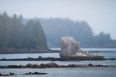 Photograph - Foggy Morning On The Pacific Coast by Dan Sproul