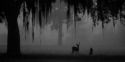 Photograph - Foggy Morning by Ronald Broome