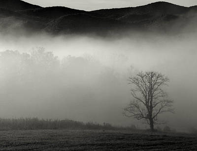 Photograph - Foggy Mountain-tennessee by CK Brown