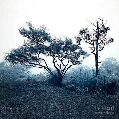Foggy Mountaintop Art Print by Russ Brown