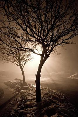 Foggy Night Art Print by Elizabeth Richardson