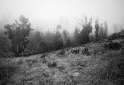 Photograph - Foggy October Morning by Alexander Kunz