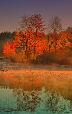 Photograph - Foggy On Orange by Emily Stauring