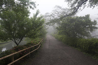 Photograph - Foggy Park by Masami Iida