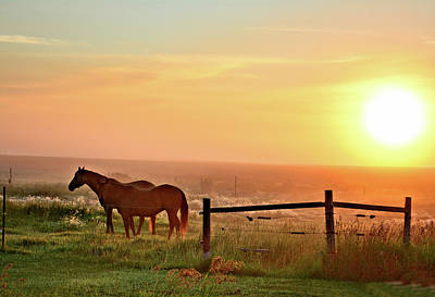 Photograph - Foggy Pastures by Bonfire Photography