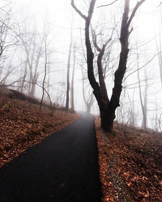 Photograph - Foggy Path by Alan Raasch