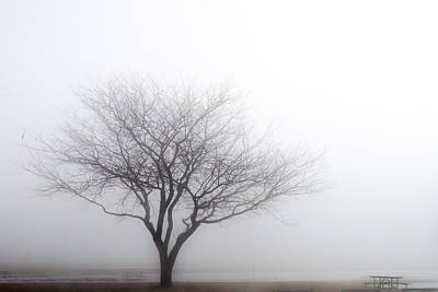 Photograph - Foggy Picnic by Stewart Helberg