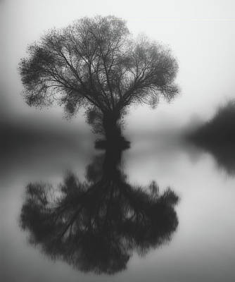 Photograph - Foggy Reflections by Pixabay