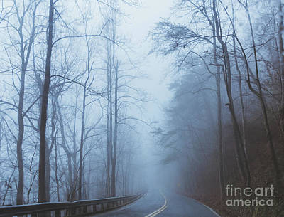 Photograph - Foggy Road by Andrea Anderegg