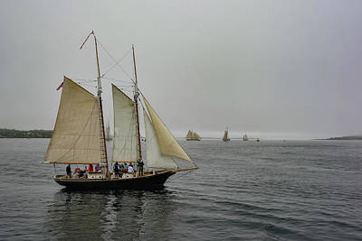 Photograph - Foggy Sails by Jesse MacDonald