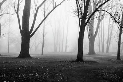 Photograph - Foggy Scene In Boise Idaho by Vishwanath Bhat