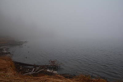 Photograph - Foggy Shore by Jenessa Rahn