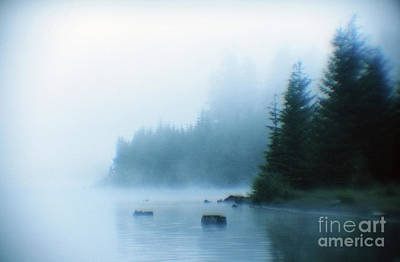 Photograph - Foggy Shoreline Timothy Lake Mount Hood by Rick Bures