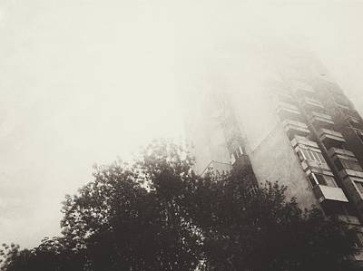 Photograph - Foggy by Siegfried Ferlin