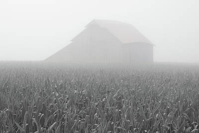 Photograph - Foggy Summer Barn by Dylan Punke