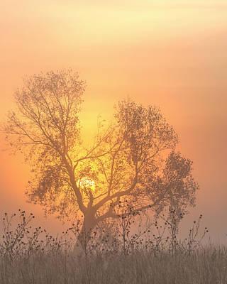 Photograph - Foggy Sunrise -04 by Rob Graham